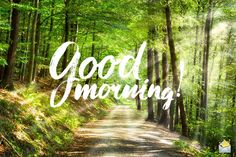 Good morning picture with forest landscape. Good Morning Images Flowers, Good Morning Picture, Good Morning Good Night, Morning Pictures, Good Morning Wishes, Good Morning Boyfriend Quotes, Good Morning Quotes, Happy Birthday Messages, Happy Birthday Images