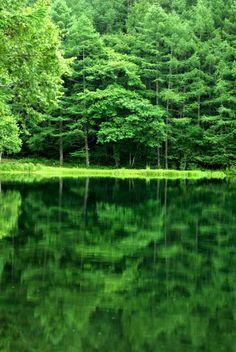 lifeisverybeautiful:  Mishaka pond, Nagano, Japan via GANREF