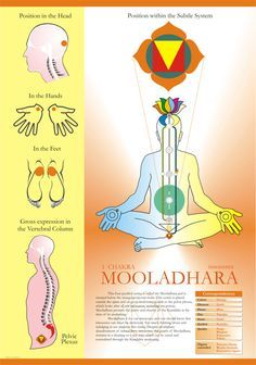 "What Is Acupuncture Mooladhara Chakra Sahaja yoga - ""The first centre is called the Mooladhara centre. It has four petals (sub-plexuses), is placed below the triangular bone, and is responsible on the physical level of the manifestation of the… Sahaja Yoga Meditation, Kundalini Yoga, Guided Meditation, Chakra Heilung, Muladhara Chakra, Chakra Root, Chakra Chart, Chakra Symbols, 7 Chakras"