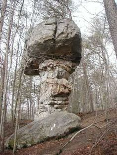 Mushroom Rock ~ on the Cumberland Trail in Southeast Tennessee.