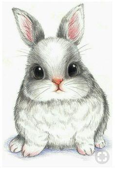 萌 兔 彩 铅 conejos bunny drawing, rabbit drawing и draw Bunny Drawing, Bunny Art, Bunny Pics, Big Bunny, Cute Drawings, Animal Drawings, Pencil Drawings, Drawings Of Cats, Realistic Drawings