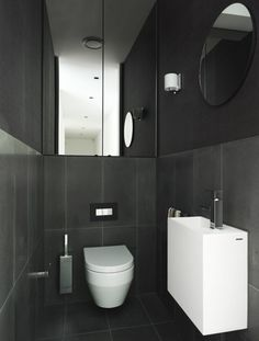 Dramatic powder room. Looks like mirrored cupboards to ceiling above toilet suite with Inwall cistern