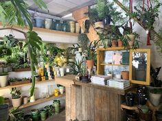 The shop address is Lordship Lane with the actual entrance on Frogley Road. The nearest stations are North Dulwich and East Dulwich Antique Market, Vintage Market, Mini Milk Bottles, Dulwich Picture Gallery, London Guide, Glass Picture Frames, Forest Plants, Tin Candles, Brick Building