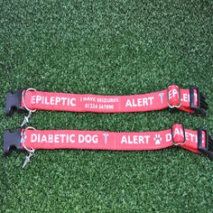 Epileptic - Diabetic - Medical Alert - Ribbon Puppy Small Large Dog Collar - Choice of Collar Fastenings - All Sizes by DottiesPetBoutique on Etsy