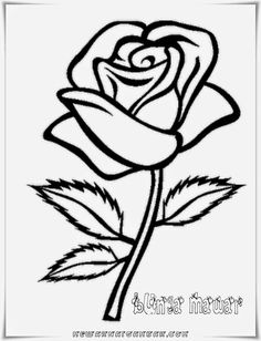 Here You Can See The Clipart Of Rose Collection You Can Use These Clipart Of Rose For Your Documents Web Sites Art Projects Or Presentations