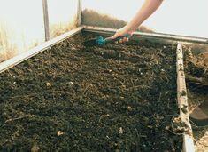 Теплица: здоровая почва - гарантия урожая | Садовое обозрение | Яндекс Дзен