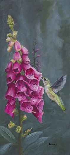 art print of a hummingbird and foxglove painting