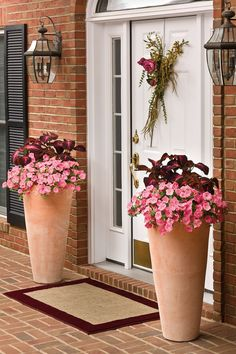 This entryway has a warm and casual feel to it. In these containers, ColorBlaze Kingswood Torch Coleus and Supertunia Bermuda Beach will grow all summer long, with the petunias trailing down the sides of the tall urns in waves and the coleus filling in on top. A feminine style and color setting.