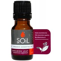 Directions for Use: Essential oils are the highly concentrated active ingredients of plants. They should always be diluted in a base before use and should not be taken internally without professional recommendation. Essential Oils Online, Essential Oil Uses, Cinnamon Leaf Oil, Cinnamon Essential Oil, Active Ingredient, Conditioner, Essentials, Skin Care