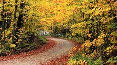 Yiruma (이루마) - Autumn Scene [HD]