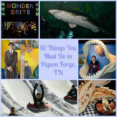 10 Things you Must do In Pigeon Forge. Great list of all the fun things you need to do with kids in the Pigeon Forge area.