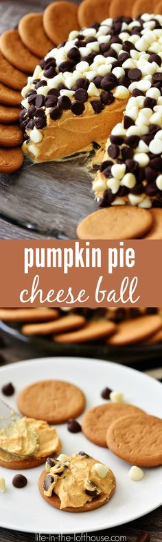 This Pumpkin Pie Cheese Ball is creamy and delicious, just like the traditional pie. It's perfect to serve at any holiday party! Pumpkin Recipes, Fall Recipes, Sweet Recipes, Holiday Recipes, Pumpkin Ideas, Holiday Foods, Holiday Ideas, Yummy Treats, Delicious Desserts
