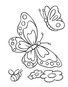 iColor ~ Butterflies In Summer (686×876)