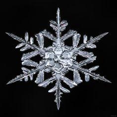 Snowflake-a-Day #21 by Don Komarechka - Photo 133105339 / 500px
