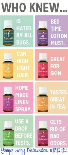 Who knew all of the uses for oils? There are so many fantastic uses for Young Living Essential Oils! There are so many fantastic uses for Young Living Essential Oils! Interested in purchasing? Buy Essential Oils, Essential Oil Blends, Humidifier Essential Oils, Young Living Oils, Young Living Essential Oils, Yl Oils, Doterra Oils, Living Essentials, Perfume