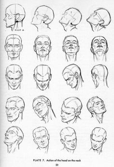 an illustration of head positions and turns of the neck...a neat addition to the arsenal of thought