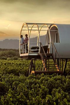 Vineyard Lofts stand above the vineyard on stilts with their own private terrace. Entre Cielos (Mendoza, Argentina) - Jetsetter