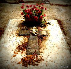 Flowers  Municipal Cemetery of Granada
