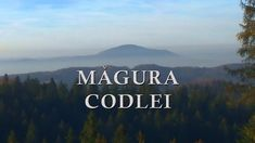 Magura Codlei | Ce este dealul ala de acolo? Mountains, Nature, Travel, Wings, Voyage, Viajes, Traveling, The Great Outdoors, Trips