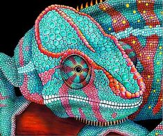 Items similar to Panther Chameleon Blue Colored Pencil Drawing on Etsy Les Reptiles, Cute Reptiles, Reptiles And Amphibians, Chameleon Tattoo, Animals Beautiful, Cute Animals, Terrarium Reptile, Panther, Design Seeds