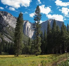 about-usa:  Yosemite National Park - California - USA (von...