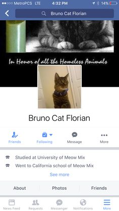 That's right! I got me a call mom on my team.. She put up my own FB page.