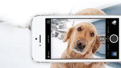 5 apps om betere foto's te maken met je iPhone