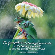To perceive the healing of your brother as the healing of yourself ~ A Course in Miracles #acim  https://www.facebook.com/AwakeningtoLoveACIM/photos/pb.563608800452392.-2207520000.1437326005./718920391587898/?type=3&theater