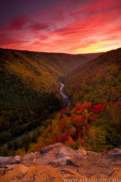 Blackwater Canyon State Park, West Virginia  ♥ ♥ www.paintingyouwithwords.com