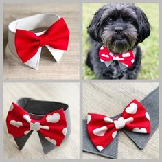 Dog Bows, Bow Ties For Dogs, Dog Clothes Patterns, Pet Clothes, Dog Clothing, Dog Wedding, Wedding Poses, Wedding Ideas, Dog Crafts