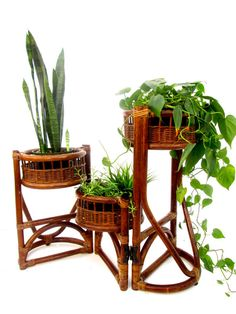 Vtg 3-Tier Rattan / Bamboo Plant Stand Orchid by ElectricMarigold