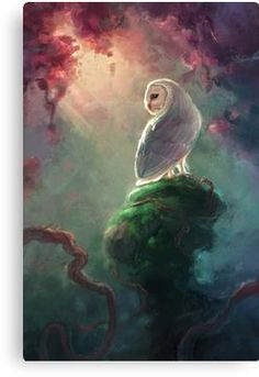 barn owl Art Print by torysevas Owl Canvas, Canvas Prints, Art Prints, Owl Artwork, Owl Pictures, Beautiful Owl, 2d Art, Fantasy Art, Illustration Art
