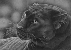 Intensity by ~clive64 on deviantART