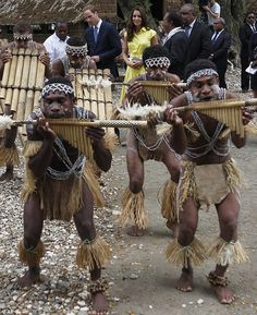 Pan pipe moods: At one hut, a group of traditionally dressed musicians from the Isabel Province played God Save The Queen on their pan pipes Prince William And Kate, William Kate, Kate Middleton Closer, Duke And Duchess, Duchess Of Cambridge, Shark Costumes, Tribal Women, Save The Queen, Westminster Abbey