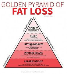 If You Want to Lose Weight, a Trainer's Fat-Loss Pyramid Will Show You What's Most Important - Weight Loss - Diet Quick Weight Loss Tips, Weight Loss Snacks, Losing Weight Tips, Want To Lose Weight, Weight Loss Plans, Weight Loss Program, Reduce Weight, Diet Program, Diet To Lose Fat