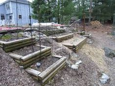 Garden Dilemmas, Delights & Discoveries, Ask Mary Stone Mary Stone, Cement Pavers, Landscaping A Slope, Septic System, Raised Beds, Flower Beds, Landscape Design, Raising, Yard