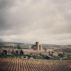 Samaniego, Rioja Alavesa. Wine tours