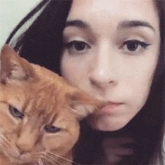 10 Kitties Who Love To Give Kisses | CutesyPooh