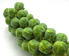 Kitchen Cook: Brussel Sprouts