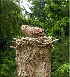 carved from a single stump. Far out...........http://www.stanleyrill.com/images/2012/Owl&stump-nest.jpg