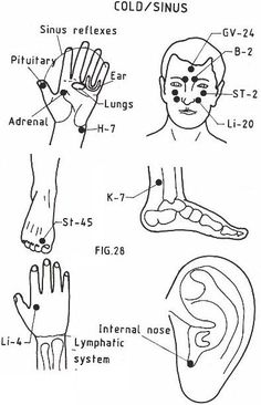 Acupressure points to stay fit