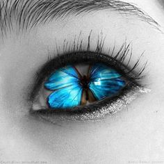 Blue Butterfly shared by fashiolista on We Heart It Pretty Eyes, Cool Eyes, Beautiful Eyes, Eyes Without A Face, Look Into My Eyes, Butterfly Eyes, Butterflies, Eyes Artwork, Behind Blue Eyes