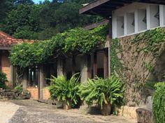 entrada Fazenda Bom Jardim Plants, Farmhouse, Houses, Entryway, Planters, Plant, Planting