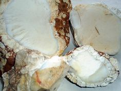 White Chalcedony Nodules Blue Chalcedony, Camembert Cheese, Minerals, Rocks, Food, Essen, Meals, Stone, Batu