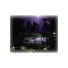 193144-Dark-Forest.transparent.png ❤ liked on Polyvore featuring nature, tubes and backgrounds