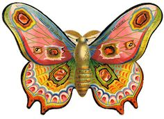 Vintage Advertising Graphic - Gorgeous Colorful Moth - The Graphics Fairy