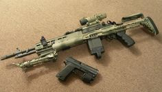 M14 in a sage chassis and an HK pistol. I like that combination.