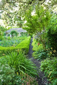 English influence in its cottagey borders of perennials (in Oregon).