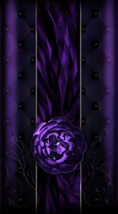 Black purple wallpaper iphone and backgrounds in. Black And Purple Wallpaper, Flowery Wallpaper, Purple Wallpaper Iphone, Wallpaper Iphone Disney, Purple And Black, Iphone Wallpapers, Wallpaper Backgrounds, Luxury Wallpaper, Heart Wallpaper