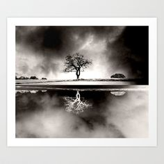 Solitary+Reflection+Art+Print+by+ALLY+COXON+-+$20.00